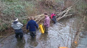Volunteers building flow deflectors in the river channel