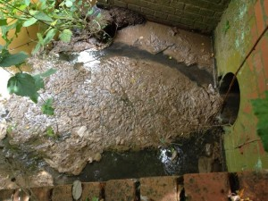 Sewage pollution and waste enters the Little Avon near Charfield