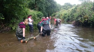 Volunteers at work in the Midford Brook